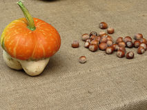 Autumn composition with pumpkin and hazelnuts on jute fabric background Stock Photography