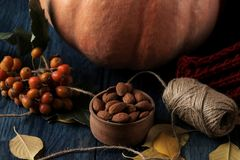 Autumn composition with pumpkin nuts and berries and a warm scarf on a blue table stock photography