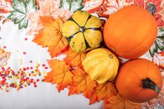 Thanksgiving background. Autumn composition, pumpkin and squash. Halloween or Thanksgiving background Stock Images