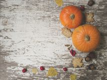 Autumn composition. Pumpkins, dried leaves, cookies, chestnuts, hawthorn and barberry fruits on a white vintage stock photo
