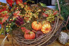 Autumn composition with pumpkins, leaves and berries royalty free stock images