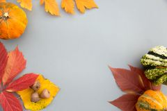 Autumn composition. Pumpkins, leaves on pastel gray background. Autumn, fall, halloween concept. Flat lay, top view, copy space stock photos
