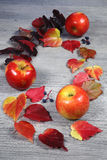 Autumn composition: red apples and colorful leaves Royalty Free Stock Photography