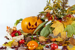 Autumn composition of vegetables of leaver. Autumn composition of vegetables of leaves and the pumpkin halloween on the white background stock photography