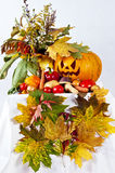 Autumn composition of vegetables of leaver. Autumn composition of vegetables of leaves and the pumpkin halloween on the white background stock image