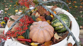 Autumn composition, watermelon, vegetables and leaves Royalty Free Stock Images