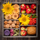 Autumn composition in wooden box. Royalty Free Stock Photo