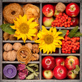 Autumn composition in wooden box. Collage. Royalty Free Stock Photo
