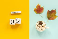 Autumn composition. Wooden calendar September 9, cup of cocoa with marshmallows and yellow autumn leaves on yellow blue. Background. Top view Flat lay Mockup stock photography