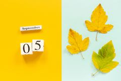 Autumn composition. Wooden calendar September 5 and yellow autumn leaves on yellow blue background. Top view Flat lay. Mockup Concept Hello September stock photos