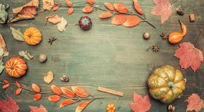Autumn composition, yellow leaves, small pumpkins frame on wooden background, space for text flat lay royalty free stock photos
