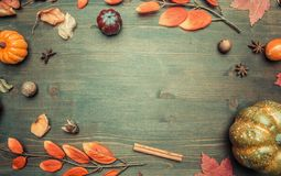 Autumn composition, yellow leaves, small pumpkins frame on wooden background, space for text flat lay stock photo