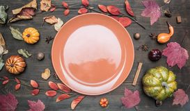 Autumn composition, yellow leaves, small pumpkins lined around brown plate, space for text flat lay royalty free stock image