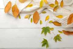 Autumn composition with yellow leaves and a warm scarf. autumn time. on a white wooden table. top view with space for inscription stock photos