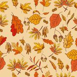 Autumn composition with yellow and red leaves. On a colored background for your ideas Royalty Free Stock Photography