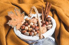 Autumn Concept Basket with Assorted Mixed Nuts Peanuts Almonds Hazelnuts Pine Branch Yellow Blanket Cozy Healthy Concept Autumn. Winter Background royalty free stock photography