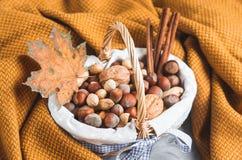 Autumn Concept Basket med sorterade blandade tokiga jordnötmandelhasselnötter sörjer för gul höst för begrepp filtslags tvåsittss royaltyfri fotografi