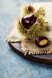 Autumn concept with Chestnuts and leaves Stock Images