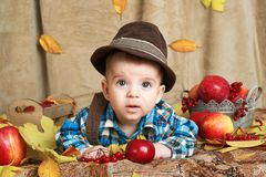 Autumn concept - child boy lie on yellow leaves with fruits and vegatbles, red apples and pumpkins stock photography
