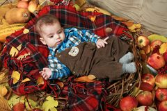 Autumn concept - child boy lie on yellow leaves with fruits and vegatbles, red apples and pumpkins royalty free stock image
