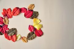 Autumn concept colorful leaves with space for text on background royalty free stock photos