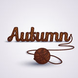 Autumn concept Knit Stock Photos