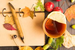 Autumn concept with open books for plan and hot drink with lemon stock photos