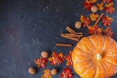 Autumn concept. Pumpkin, acorns, yellow leaves, cinnamon on a dark background stock photos