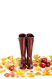 Autumn concept. Rubber boots color Marsala. Autumn leaves and ap Royalty Free Stock Image