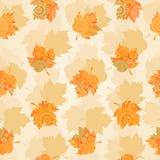 Autumn concept seamless pattern. Royalty Free Stock Photo