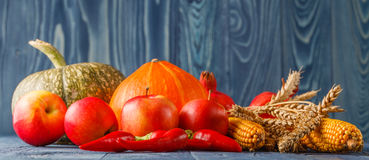 Autumn concept with seasonal fruits and vegetables Royalty Free Stock Photos