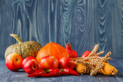 Autumn concept with seasonal fruits and vegetables Stock Photo