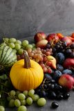 Autumn concept with seasonal fruits and vegetables Stock Photography
