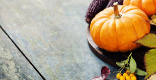 Autumn concept with seasonal fruits and vegetables Royalty Free Stock Image