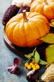 Autumn concept with seasonal fruits and vegetables Stock Image