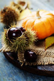 Autumn concept with seasonal fruits and vegetables Stock Photos