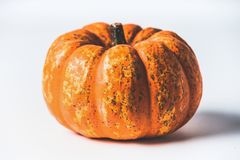 Autumn concept. Various pumpkins on white background with fall leaves, front view. Harvest vegetables , Thanksgiving food royalty free stock image