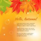 Autumn congratulation banner. Royalty Free Stock Image