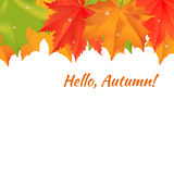 Autumn congratulation banner. Autumn orange, red, green maple leaves at the top of white background. Cartoon vector illustration. Concept for autumn seasonal stock illustration