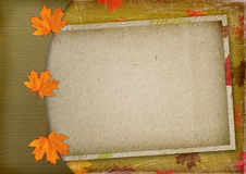 Autumn congratulation with multicolored maples Stock Photo