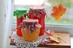 Autumn Conserves Royalty Free Stock Photos