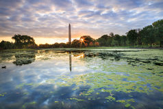 Autumn Constitution Gardens Washington DC Monument Royalty Free Stock Photo