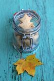 Autumn cookies in a retro glass jar. And leaf on a blue wooden background Stock Photos