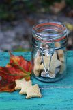 Autumn cookies in a retro glass jar. And leaf on a blue wooden background Stock Images