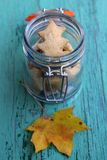 Autumn cookies in a retro glass jar. And leaf on a blue wooden background Royalty Free Stock Image