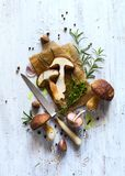 Autumn cooking  background;  organic porcini Mushroom; seasoning Stock Photo