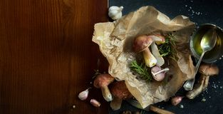 Autumn cooking  background;  organic porcini Mushroom; seasoning Royalty Free Stock Photos