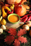 Autumn cooking Royalty Free Stock Photography