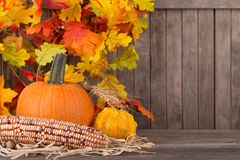 Autumn Corn and Gourds Stock Images
