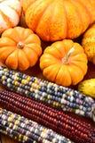 Autumn Corn y calabazas Foto de archivo libre de regalías